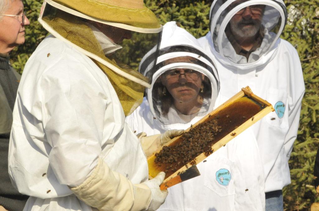 beekeepingclub