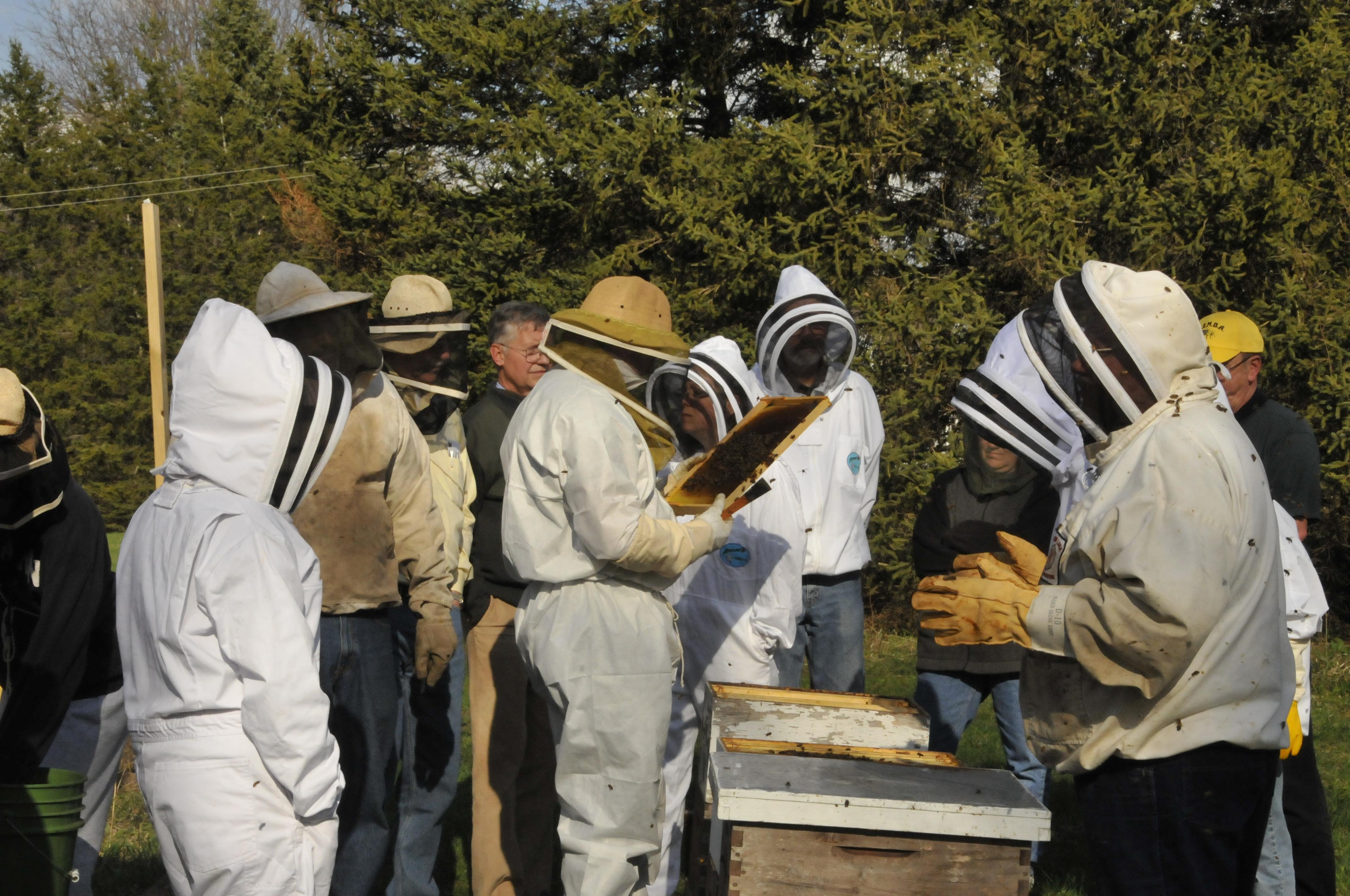 beekeepingclub2