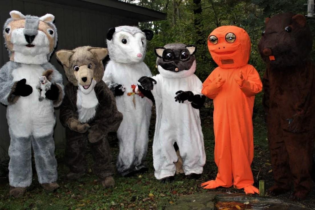 EW All Costums