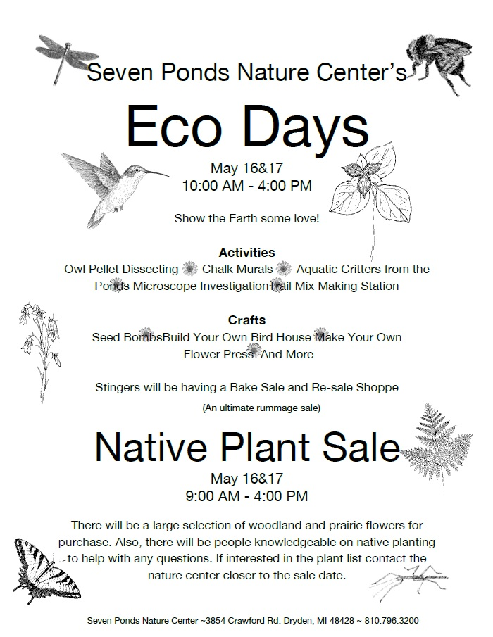Eco Days