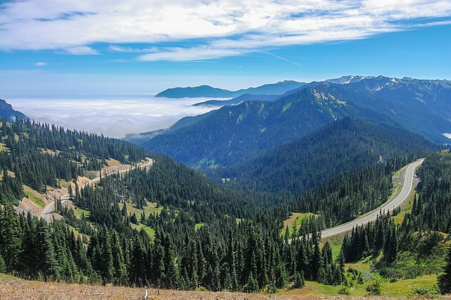 Overlooking the road winding its way from Port Angeles to Hurricane Ridge.