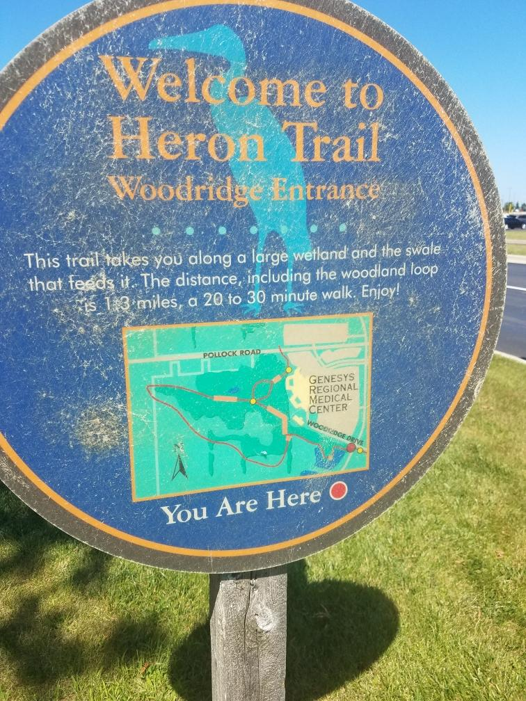 Krincy recently hiked the Heron Trail at Genysis Regional Medical Center