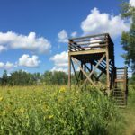 Observation platform on the tallgrass prairie
